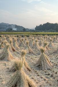 稲刈り後の風景の写真素材 [FYI00420773]