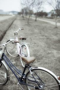 自転車のカップルの写真素材 [FYI00420818]