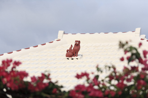 沖縄の屋根シーサーの素材 [FYI00420829]