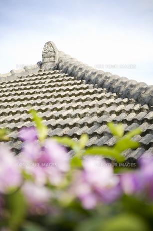 沖縄の屋根の素材 [FYI00420831]