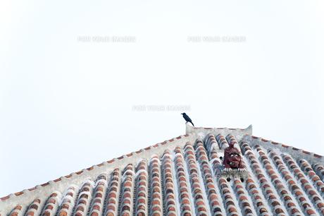 沖縄の屋根シーサーの写真素材 [FYI00420840]