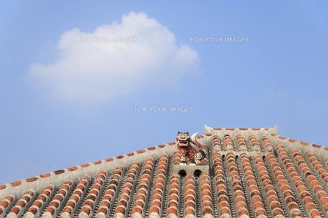 沖縄の屋根シーサーの写真素材 [FYI00420845]