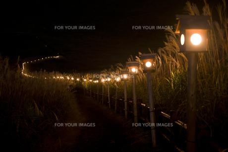 高原の山灯りの写真素材 [FYI00420846]