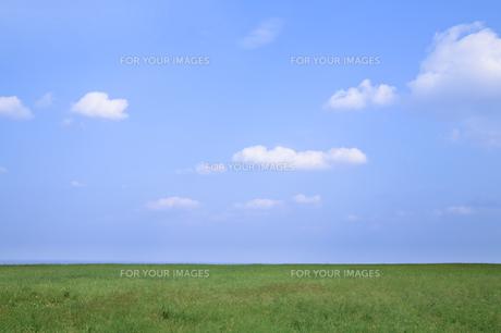 青空と草原の素材 [FYI00420859]