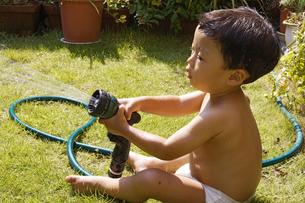 庭で水遊びをする赤ちゃんの写真素材 [FYI00420861]