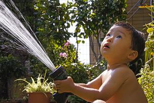 庭で水遊びをする赤ちゃんの写真素材 [FYI00420874]
