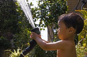 庭で水遊びをする赤ちゃんの写真素材 [FYI00420891]