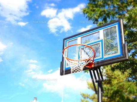バスケットゴールの写真素材 [FYI00420999]