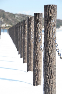 雪景色の素材 [FYI00421145]