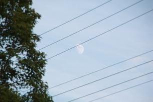 日中の月の素材 [FYI00421148]