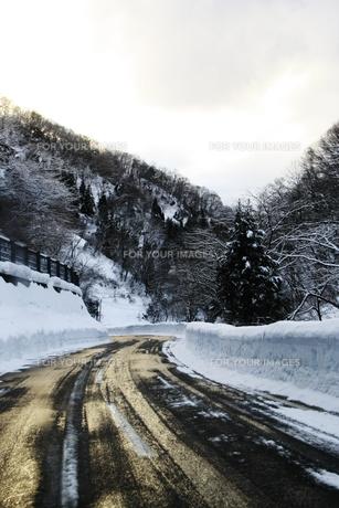 スキー場の帰り道の素材 [FYI00421179]