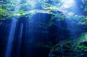 緑の岩間からしみ出る清水の素材 [FYI00421242]