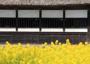 日本の古民家の写真素材 [FYI00421342]