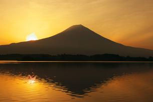 朝の富士山の写真素材 [FYI00421362]