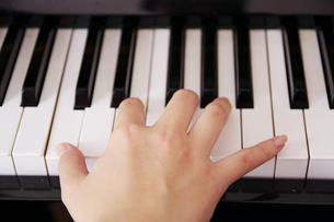 ピアノを弾く手の写真素材 [FYI00421363]