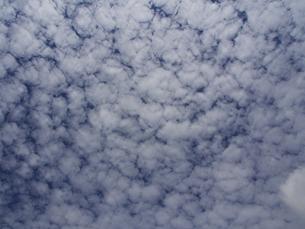 羊雲の写真素材 [FYI00421370]