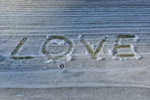 霜に書いたLOVEの文字の写真素材 [FYI00421379]