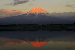 夕方の逆さ富士の写真素材 [FYI00421385]