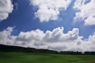 高原の夏の写真素材 [FYI00421391]