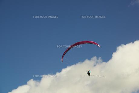 大空を飛ぶパラグライダーの写真素材 [FYI00421396]