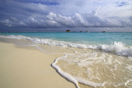 モルディブのビーチの写真素材 [FYI00421408]