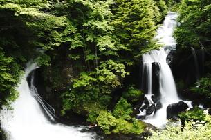 竜頭ノ滝の写真素材 [FYI00421416]