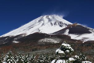 水ヶ塚から見た雪の富士山の写真素材 [FYI00421436]