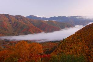早朝の乗鞍高原の写真素材 [FYI00421462]