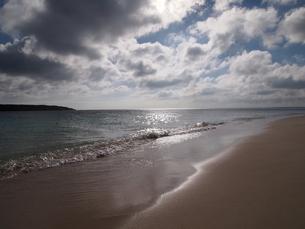 光る前浜の素材 [FYI00421530]