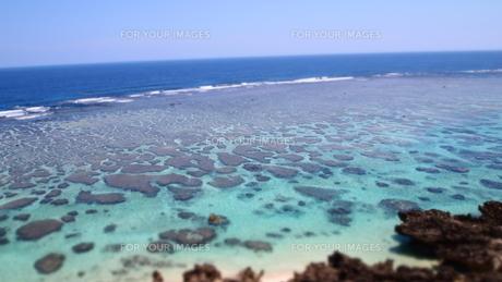 サンゴ礁の海岸の素材 [FYI00421532]