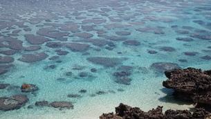 サンゴ礁の海岸の素材 [FYI00421550]