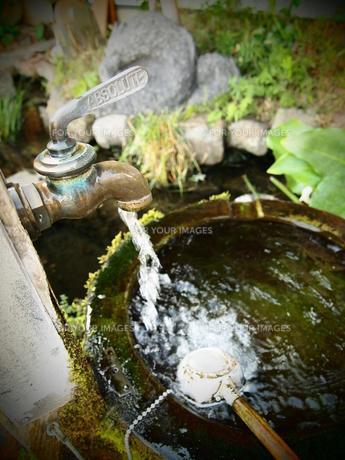 島原の湧き水の素材 [FYI00421560]
