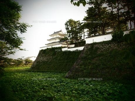 島原城 堀の素材 [FYI00421561]