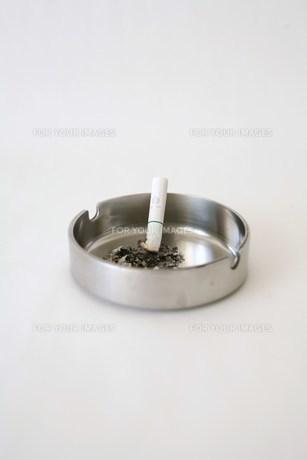たばこ・禁煙への写真素材 [FYI00421761]