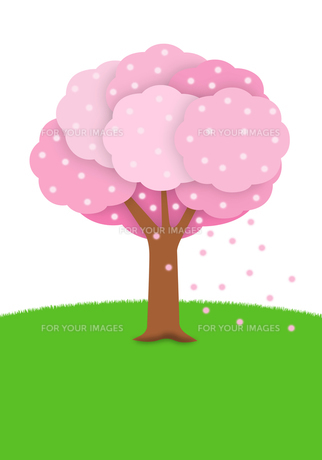 緑の丘の桜の写真素材 [FYI00422292]