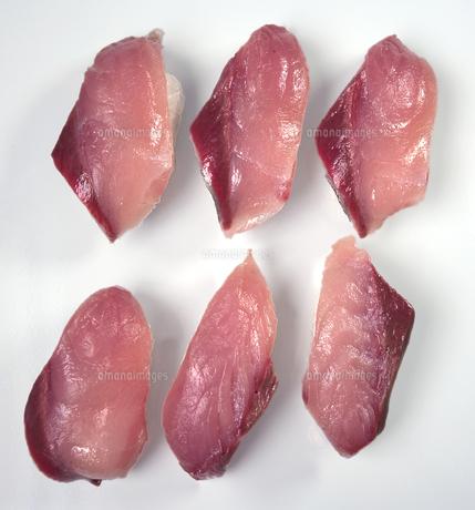 寒ブリ寿司の素材 [FYI00422347]