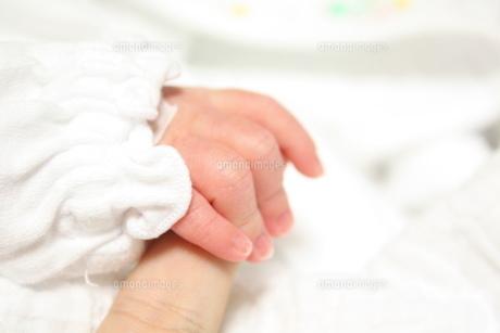 赤ちゃんの手の写真素材 [FYI00422552]
