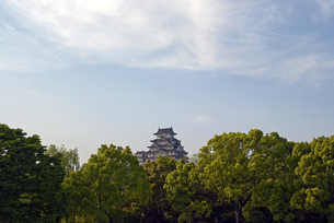 姫路城の写真素材 [FYI00422714]