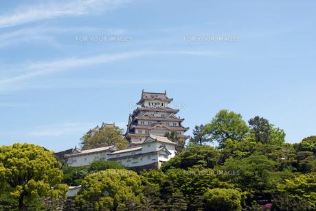 姫路城の写真素材 [FYI00422715]
