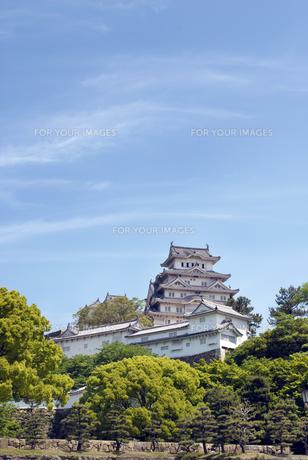 姫路城の写真素材 [FYI00422717]