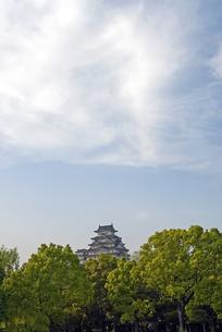 姫路城の写真素材 [FYI00422720]