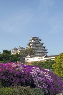 姫路城の写真素材 [FYI00422727]
