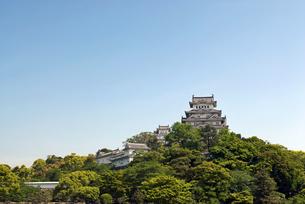 姫路城の写真素材 [FYI00422736]