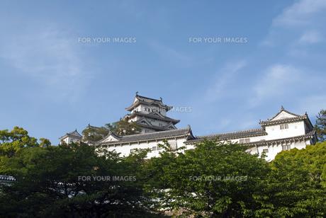 姫路城の写真素材 [FYI00422740]