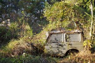 秋、廃車の写真素材 [FYI00423056]