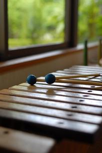 木琴の写真素材 [FYI00423130]