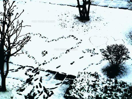 雪に足跡の素材 [FYI00423158]