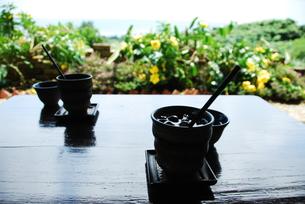 木陰のカフェの写真素材 [FYI00423619]