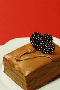 チョコレートケーキの写真素材 [FYI00423862]