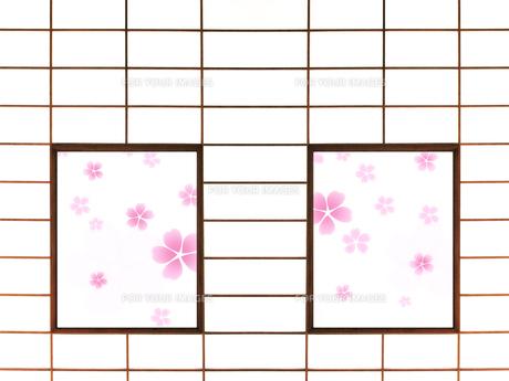 障子と桜の写真素材 [FYI00424651]